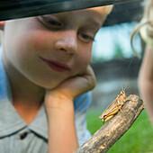 Caucasian boy examining grasshopper