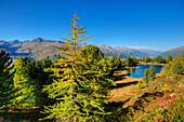 Lake Hanen near St. Moritz, Engadine, Canton Grisons, Switzerland