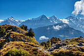 View from Oberberghorn at Schreckhorn, Eiger, Monch and Jungfrau, Grindelwald, Bernese alps, Canton Berne, Switzerland
