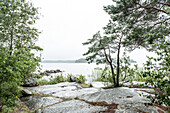 view across the lake vanern on a rainy summer day in Vastergotland, Sweden