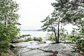 Sicht auf den Vänernsee an einem regnerischen Sommertag, Västergötland, Schweden