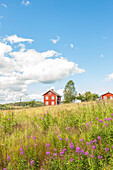Rote Holzhäuser auf dem Gut von Selma Lagerlöf, Marbacka, Gemeinde Sunne, Marbacka, Värmland, Schweden