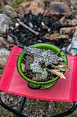 Gesammelte Rinde für ein Lagerfeuer beim Camping, Dalarna, Schweden