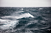Rough seas with eight meter waves seen from expedition cruise ship MV Sea Spirit (Poseidon Expeditions) Drake Passage between Antarctica and Argentina
