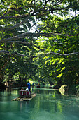 Bamboo raft excursion on Martha Brae river near Falmouth, Saint James, Jamaica