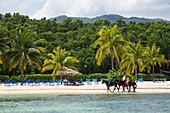 Half Moon Resort horseback ride excursion along Sunrise Beach Rose Hall, near Montego Bay, Saint James, Jamaica