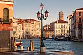 Overlooking the Grand Canal with the Ca 'Rezzonico, Palazzo Giustinian, the University Cà Foscari, Palazzo Balbi and the Tower of Kriche Santa Maria Gloriosa dei Frari, (from left) in the morning sun, street lamp in the foreground, Dorsoduro, Venice Venet
