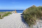 Strand am Darßer Ort, Ostseebad Prerow, Fischland-Darß-Zingst, Ostseeküste, Mecklenburg-Vorpommern, Norddeutschland, Deutschland, Europa