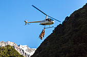 helicopter carry shot deer out of wilderness, deer culling, Matukituki Valley, river, alpine scenery, snowy mountains, Mount Aspiring National Park, Southern Alps, South Island, New Zealand