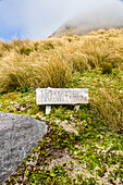 No WiFi Here, wooden sign, message in the wilderness, off the grid, Taranaki, North Island, New Zealand