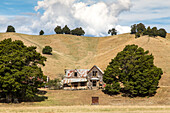 farm house ruin, abandoned, falling apart, timber building, dry grazing land, hills, Wakefield, South Island, New Zealand