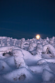 Full Moon, Super Moo and Winter landscape, Schierke, Brocken, Harz national park, Saxony, Germany
