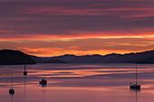 Dämmerung über die ruhigen Gewässer der Königin Charlotte Sound, Südinsel, Neuseeland, Pazifik