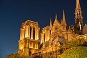 EU, France, Paris. The iconic, Gothic, Notre Dame Cathedral illuminated against the night sky. Viewed from sunset sightseeing boat on the River Seine.