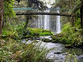 Whangarei Falls, Whangarei, Northland, New Zealand High Dynamic Range Images