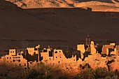 Tinerhir, Tineghir, Tinghi, Todra valley, Todra Gorges, Oasis, landscape, Old Kasbah, Morocco, North Africa.