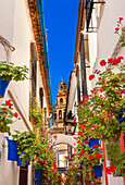 Flower Street Calleja de las Flores Old Torre del Alminar Bell Tower Mezquita Cordoba Andalusia Spain. Mezquita created in 785 as a Mosque, converted to a Cathedral in the 1500. Calleja de las Flores old Jewish quarter of Cordoba.