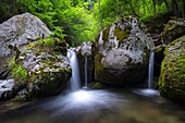One of the minor waterfalls of Cittiglio, on the San Giulio torrent, Varese, Lombardy, Italy.