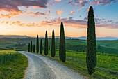Church of Santa Vitaleta, Orcia valley, Tuscany, Italy.