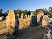 Almendres Cromlech (Cromeleque dos Almendres), an oval stone circle dating back to the late neolithic or early Copper Age. Europe, Southern Europe, Portugal, March.