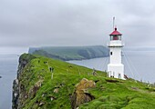 The lighthouse on Mykinesholmur. The island Mykines, part of the Faroe Islands in the North Atlantic. Europe, Northern Europe, Denmark, Faroe Islands.