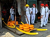 Guild cheese porters at the cheese balance, cheese market of Alkmaar, Netherlands.