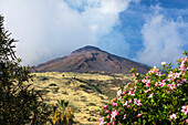 Stromboli volcano, Stromboli Island, Aeolian Islands, Lipari Islands, Tyrrhenian Sea, Mediterranean Sea, Italy, Europe