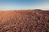 A man walking to his all-terrain vehicle in Damaraland, Kunene, Namibia