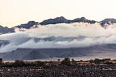 Bodennebel steigt morgens aus den Hängen der Naukluft-Berge, Hardap, Namibia, Afrika