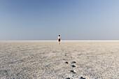 Man running over the Etosha Pan in the Etosha National Park, Namibia, Africa