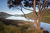 Marlborough Sound mit Spiegelung, Südinsel, Neuseeland, Ozeanien