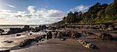 Rocky beach, Coromandel, Thames-Coromandel District, Coromandel Peninsula, North Island, New Zealand, Oceania