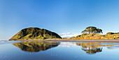 Spiegelung im Wasser, Ost-Kap, Gisborne, Nordinsel, Neuseeland, Ozeanien