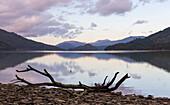 Spiegelung im Wasser, Marlborough Sounds, Südinsel, Neuseeland, Ozeanien