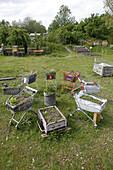 Opflanzt is, a communal gardening project, Schwere-Reiter-Strasse, Schwabing, Munich, Upper Bavaria, Bavaria, Germany