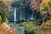Shiraito Wasserfälle mit Touristen von oben im Herbst, Fujinomiya, Shizuoka Präfektur, Japan