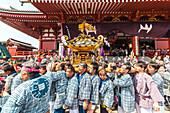 Japaner im Yukata und Trageschrein während des Sanja Festival vor dem Tempel Senso-ji, Asakusa, Taito-ku, Tokio, Japan
