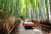 Arashiyama Bambus Wald mit Touristen und rotem Taxi, Sagaogurayama, Kyoto, Japan