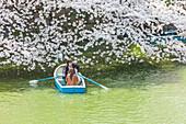 Junge Pärchen mit Boot am Chidori-ga-fuchi erfreuen sich an Kirschblüte im Frühling, Chiyoda-ku, Tokio, Japan
