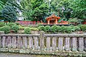 Path with many red Torii at Nezu-Shrine, Yanaka, Taito-ku, Tokyo, Japan