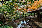 Rest House in Rikugien Garden in Autumn, Taito-ku, Tokyo, Japan