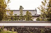 Roof of the Hirakawa- mon Gate of Imperial Palace, Chiyoda-ku, Tokyo, Japan