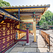 Extensive decorated golden gate of Toshogu Shrine in Ueno, Taito-ku, Tokyo, Japan