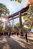Ni-no-Torii of Meiji Shrine during New Year, Shibuya, Tokyo, Japan
