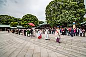 Wedding ceremony at Meiji Shrine, Shibuya, Tokyo, Japan