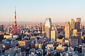 Tokyo Tower with Fuji-san at very early morning in autumn, Minato-ku, Tokyo, Japan
