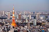 Tokyo Tower and Bay seen from above, Minato-ku, Tokyo, Japan