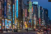 Shops with illuminated signboards along Chuo-Dori in Akihabara at night, Chiyoda-ku, Tokyo, Japan