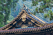 Close-up of golden decorated roof at Toshogu-Shrine, Nikko, Tochigi Prefecture, Japan