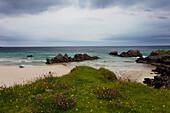 Strand, Sand, Klippen, Sommer, Gras, Highlands, Küste, Schottland